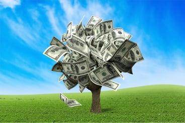 Money_Tree_1.jpg